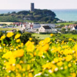 Spring Blooms At Guernsey Floral Festival